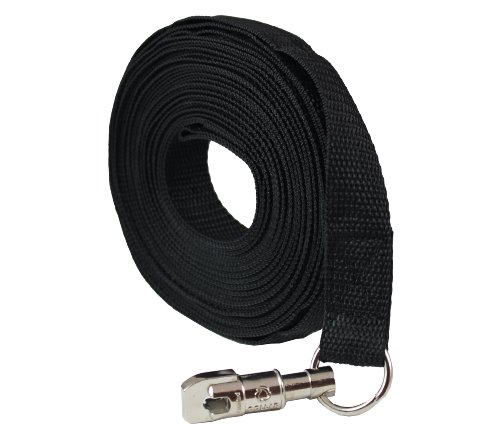 Leash Nylon Training Swivel Locking