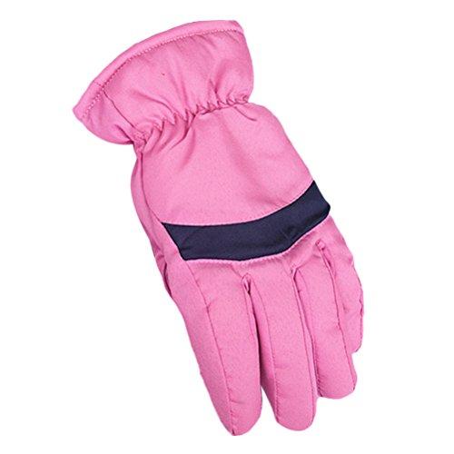 評価する塩理容師Zhhlinyuan 良質 Adult Womens Windproof Ski Gloves Fashion Outdoor 冬 Thicker Warm Gloves