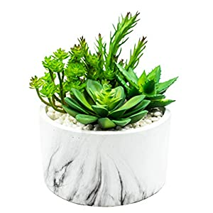 Artificial Succulent Plants in Stylish Cement Planter. Premium Home Decor for Easy No-Maintenance Greenery. Hand Crafted Marble Look for High End Appearance. Fake Cactus in 4 Attractive Pot Designs 78