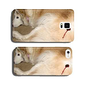 Egelbehandlung the dog, q. cell phone cover case iPhone5