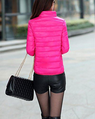 Duvet en petite Rose Femme courte veste Slim une Veste mince Lger Section et APwxaqCR