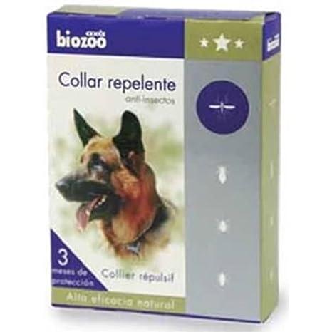 Biozoo Collar Antiparasitorio para Perros - Marrón: Amazon.es: Productos para mascotas