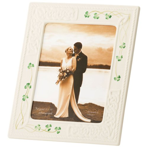 (Belleek 2998 Tara 8 by 10-Inch Frame)