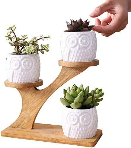 [해외]NATFUR Succulent Plant Flower Pot Holder Bamboo Shelf Pot Planter Set Without Plant / NATFUR Succulent Plant Flower Pot Holder Bamboo Shelf Pot Planter Set Without Plant