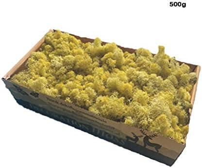 人工のトナカイのコケ、思考のある人工のコケArtコケのアートペインティングを作成できる (Color : Gold, Size : 10pack)