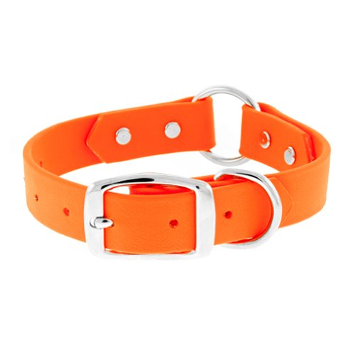 The Perfect Leash Perfect Hunting O-Ring Blaze Orange Dog Collar, 1-Inch by 20-Inch