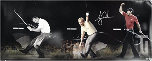 (Tiger Woods Hand Signed Photo 18