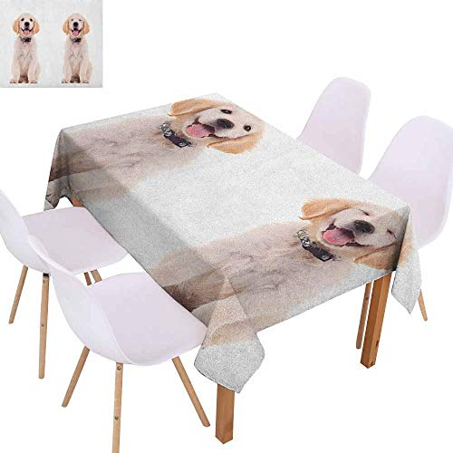 Restaurant Tablecloth Golden Retriever Two Emotional Poses of a Young Panting Domestic Puppy Happy and Playful Soft and Smooth Surface W60 xL84 Multicolor