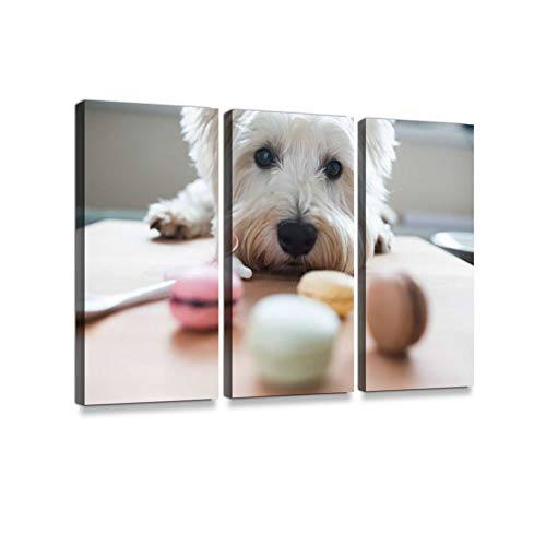 Westie with macaroons3 Pieces Print On Canvas Wall Artwork Modern Photography Home Decor Unique Pattern Stretched and Framed 3 Piece