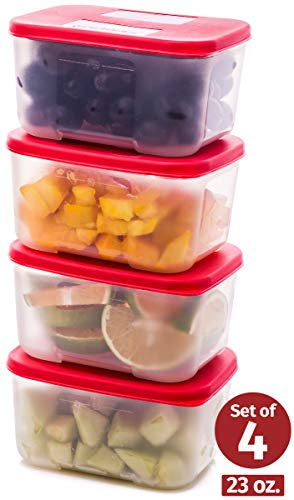 Quicker Defrost- Reusable Freezer Containers with Lids Set of 4-23.5