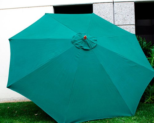 Amazon.com : New Replacement Umbrella Canopy For 10FT 8 Ribs, Color: Green ( CANOPY ONLY) : Patio Umbrellas : Garden U0026 Outdoor