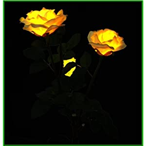 Solar Yellow Rose Flower Lights , Lamp, Solar Powered Garden Outdoor Decorative Landscape LED Rose Lights Year-round, Great Gift! 3