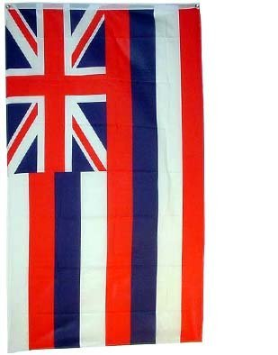 Hawaii US State Flag - 3 foot by 5 foot Polyester (NEW) by State Flag