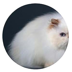 alfombrilla de ratón raza de gato persa - ronda - 20cm