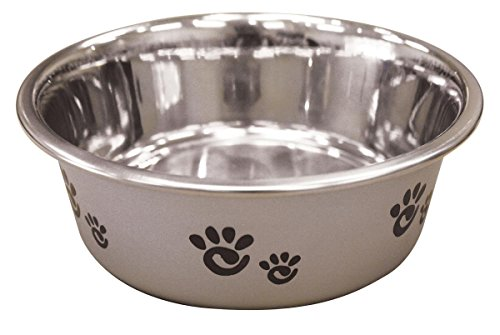 Ethical Pet Barcelona Matte and Stainless Steel Pet Dish, 16-Ounce, Silver