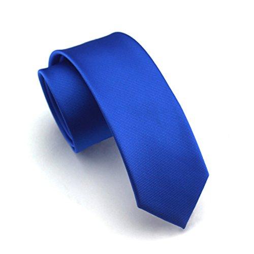 Elviros Mens Eco-friendly Fashion Solid Color Slim Tie 2.4'' (6cm) Royal Blue