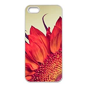 Custom Case for iPhone 5,5S with Personalized Design Fire Sunflower