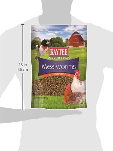 Kaytee Dried Mealworms for Chickens and Wild Birds by Kaytee (Image #4)