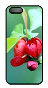 Apple iPhone 5S Case,iPhone 5S Cases - Cherry Blosso 147 PC Custom iPhone 5S Case Cover for iPhone 5S - Black