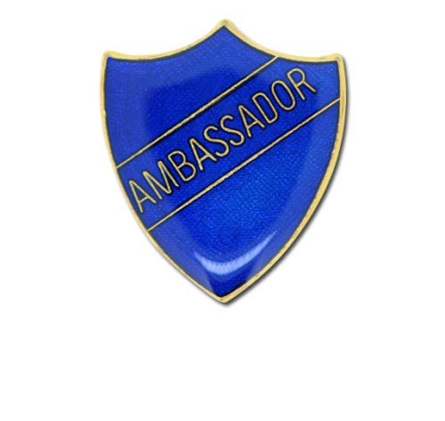 1000 Flags Ambassador Pin Badge for High School or College in Blue Colored Enamel