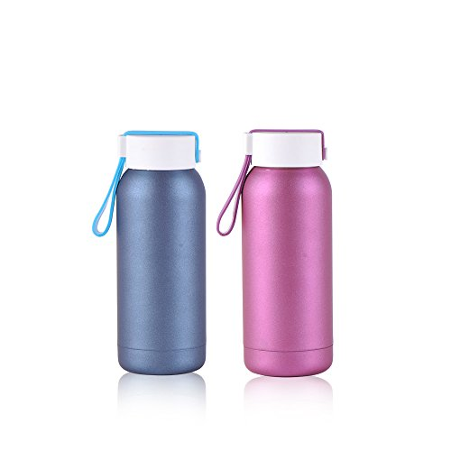 Vacuum Insulated Double Walled Thermos F - Double Frosted Slides Shopping Results