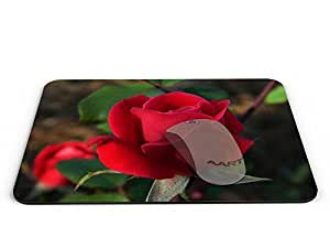 Red rose Rectangle Mouse pad - Mouse Pad / Mouse pad / Mousepad / Mousepad - AArt #MP028 (9.84 X 7.87 inches)