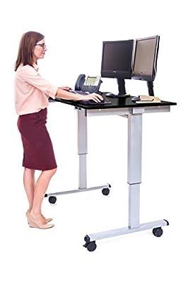 DMD Adjustable Standing Desk, 48 Inch Electric Height Adjusting Work Station, Silver Frame and Black Oak Desktop