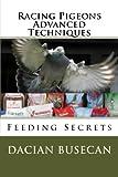 Racing Pigeons Advanced Techniques: Feeding Secrets