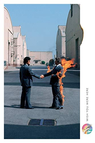 (Posters: Pink Floyd Poster - Wish You Were Here (36 x 24 inches))