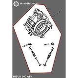 Cylinder Head Assembly - ATV, Hisun, 500cc