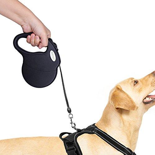 RABBITGOO Dog Leash Retractable, 16ft Dog Walking Leash for Medium Large Dog Up to 110lbs, Break & Lock System, Reflective Ribbon Cord(Black) by RABBITGOO