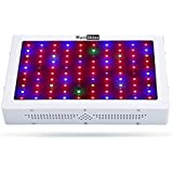 Wattshine Led Grow Light 1000W, Full Spectrum 12 Band Grow Lights Double Chips Growing Lamps with UV & IR for Indoor Plants Greenhouse Hydroponic Veg and Flower