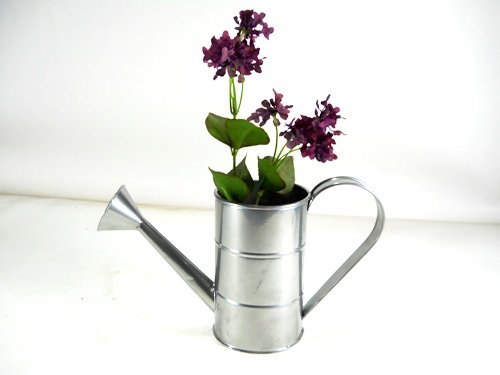 Unique Coated Tin 1 Qt Watering - Tin Watering Can