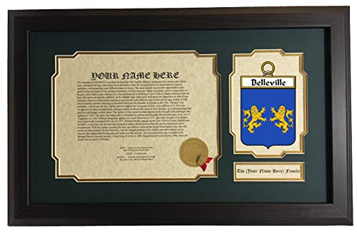Belleville - Coat of Arms and Last Name History, 14x22 Inches Matted and Framed