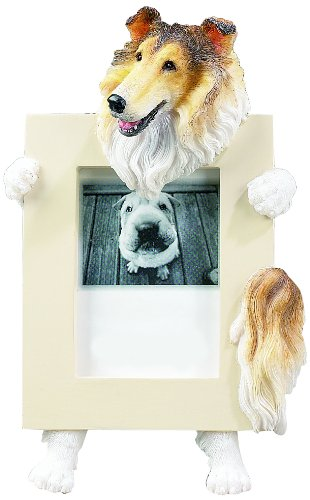Collie Dog 2.5 x 3.5'' Handpainted Picture Frame (Collie Pictures compare prices)