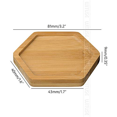 - SeedWorld Pot Trays - 2PCS/Lot Concise Style Flower Boxes Saucer Ceramic Succulent Plant Pots Bamboo Stand 1 PCs
