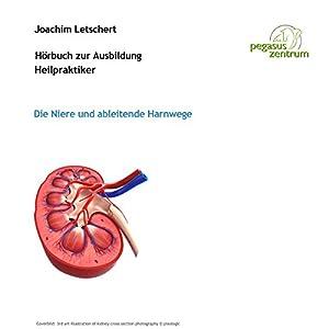 Hörbuch zur Ausbildung für Heilpraktiker: Die Niere und ableitende Harnwege Hörbuch