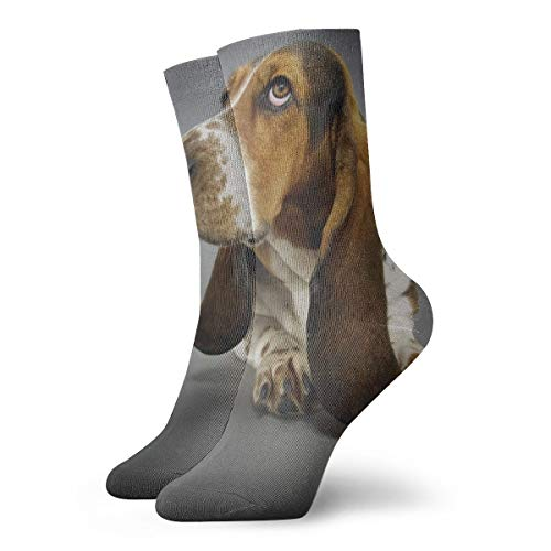WEEDKEYCAT Basset Hound Ear Adult Short Socks Cotton Funny Socks for Mens Womens Yoga Hiking Cycling Running Soccer Sports