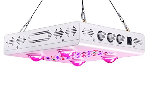 Best Professional Led Grow Light in Florida - 2