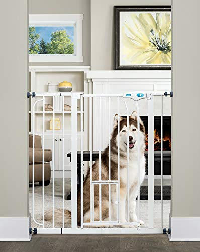 Fence No See Pet - Carlson Extra Tall Pet Gate with Small Pet Door