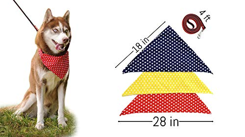 Dog Bandana Variety Pack and Leash-for Small and Big Dogs Triangle Bibs Reversible Set 3pcs Red Yellow Blue and 1 Dog Leash Nice Pack for Your Boy at Birthday All Accessories in 1 Set