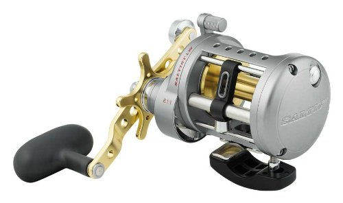 Daiwa Saltist Levelwind 6.1:1 Right Hand Conventional Fishing Reel - -