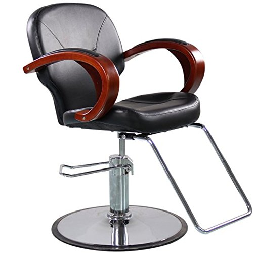 Hair Styling Chair - 9