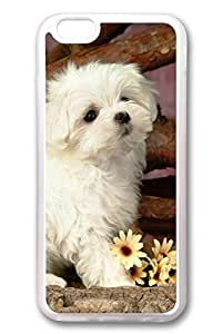 iphone 5 5s Case, iphone 5 5s Cover, iphone 5 5s ( inch) Lovely Animals-White Dog Soft Clear Cases