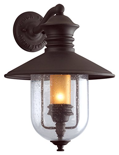 (Troy Lighting Old Town 1-Light Outdoor Wall Lantern - Natural Bronze Finish and Clear Seeded with Amber Cylinder Glass)