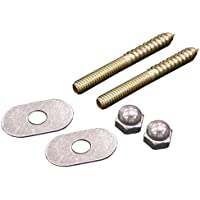 5/16 inch x 2 1/2 inch Brass Closet Screws with Oval Washer