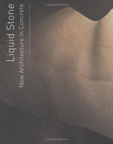 Liquid Stone Concrete (Liquid Stone: New Architecture in Concrete)