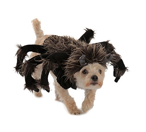 Tarantula Pet Costume - Spider - Large by Faerynicethings