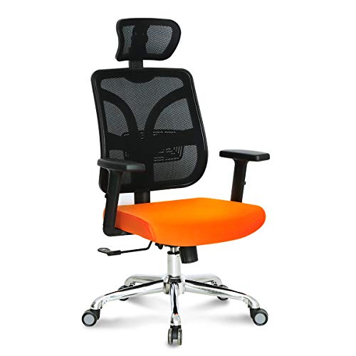 Hourseat Ergonomic Office Chair with Adjustable Headrest and Armrests High Back Mesh Executive Desk Chair with Back Lumbar Support 360° Rolling Swivel Chair for Home, Office, Study, Meeting