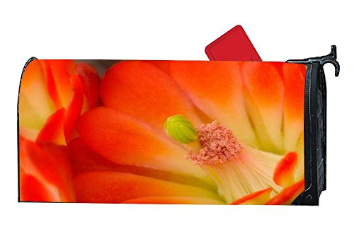 - Claret Cup Cactus Blossom Garden Magnetic Mailbox Cover MailWraps Garden Yard Home Decor for Outside - 6.5